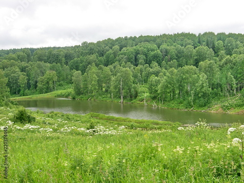 Foto op Canvas Pistache siberian summer landscape