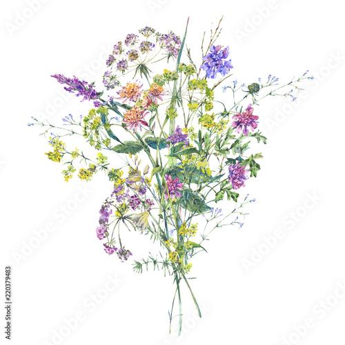 Leinwandbilder - Watercolor summer wildflowers. Botanical colorful illustration