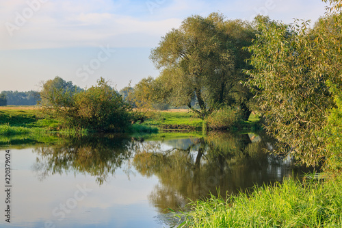 River landscape on a background of green trees on the shore at sunny summer morning