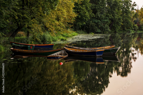 Fotografie, Tablou  Group of Old Small Boat Sink in The Lake ok Wilanow Park - Half-submerged old bo
