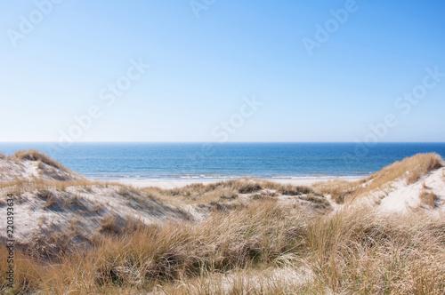 Fototapeta Dunes at the Danish North Sea coast the beach of Blaavand