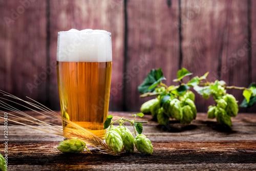 Foto auf Gartenposter Bier / Apfelwein Bier - Alkohol - Spirituosen - Getränk - Hopfen - Gerste - Stutzen- Seidel - Kanne - Glas
