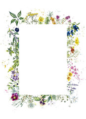 Naklejka Do kuchni Frame from herb. Watercolor hand drawn illustration. Botanical illustration