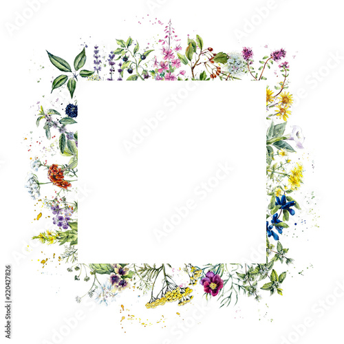 Photo  Frame from herb