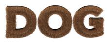 Text Dog Fur - 3d Render Hair