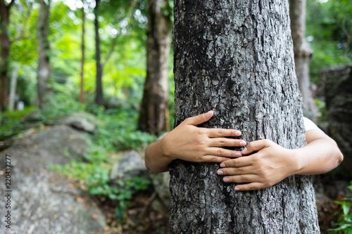 Fotografie, Obraz  Hug Tree