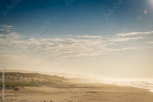 Poster de jardin Desert de sable Amagansett