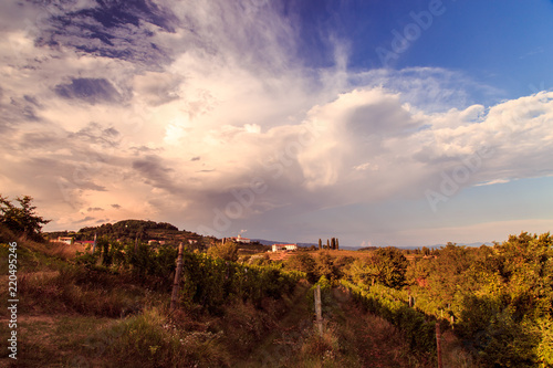 Foto auf AluDibond Durre Sunset in the vineyards of Rosazzo after the storm