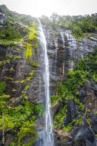 Tuinposter Oceanië Waterfall in Milford Sound lake, New Zealand