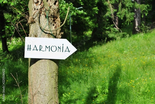Fotografía  Harmonia