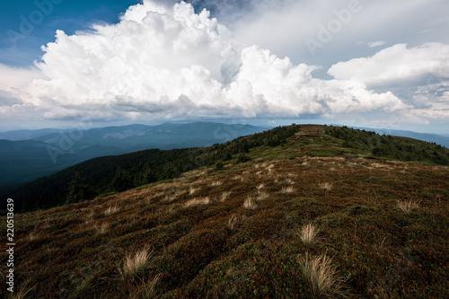 Deurstickers Chocoladebruin Beautiful landscapes of the Carpathian Mountains