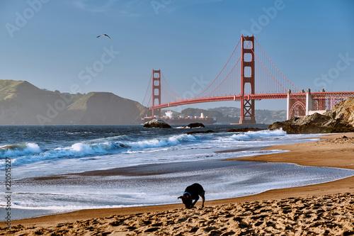 Spoed Foto op Canvas San Francisco Golden Gate Bridge, San Francisco, California