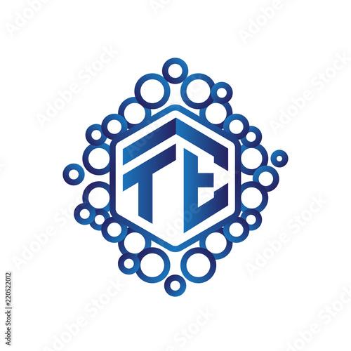 Photo  TE Initial letter hexagonal logo vector
