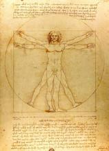 Vitruvian Man.  Drawing Of Leo...