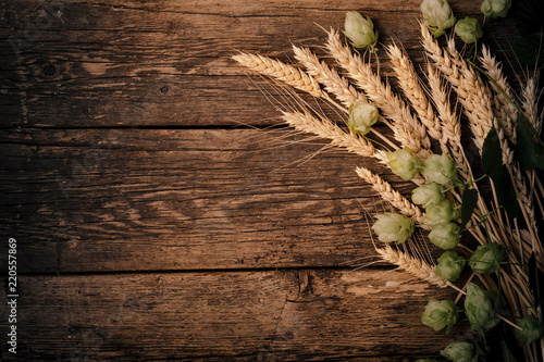 Beer brewing ingredients Hop and wheat ears on wooden cracked old table Wallpaper Mural
