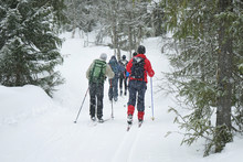A Group Of Cross Country Skiers.