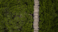 Aerial View Wooden Bridge Walk...