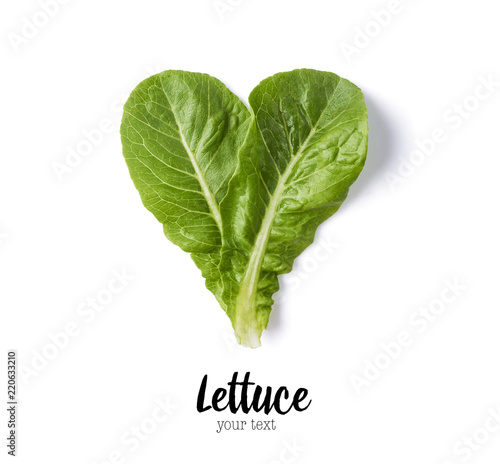 Fresh green lettuce leaves isolated on white Fototapeta