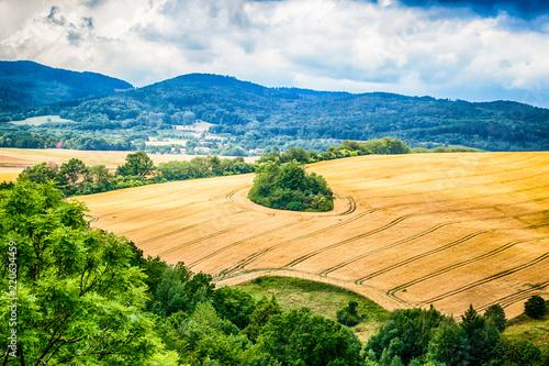 Krajobraz widoczny z zamkowego wzgórza w miejscowości Bolków, Polska - fototapety na wymiar