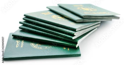 Passports of Bangladesh Canvas Print