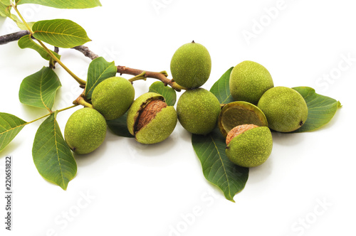 Fotomural  Green walnuts with leaves.