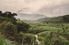 River, Plantations, Mountains ...