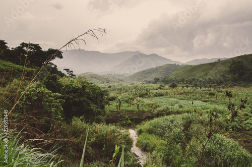 Fotomural River, plantations, mountains and lush green tropical vegetation on overcast day