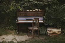 Old Vintage Piano In The Garden. Copy Space
