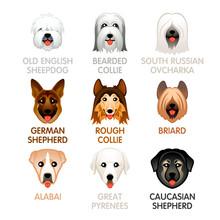 Cute Dog Icons, Set IV
