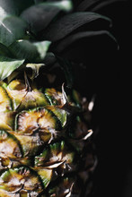 Close Up Macro Photo Of A Pineapple