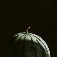 A Close Up Macro Photo Of A Watermelon On A Dark Background