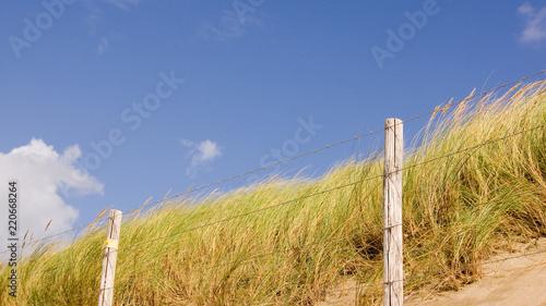 Spoed Foto op Canvas Noordzee Nordsee Düne