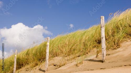 Tuinposter Noordzee Nordsee Düne