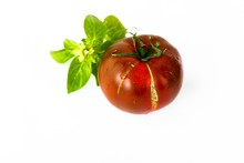 One Dark Red Tomato With Leaf ...