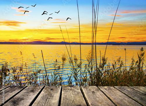 Poster Melon amanecer de colores en la orilla del lago
