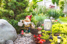 Garden Dwarf In Home Garden, G...