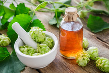 Healthy Hop Cones In Mortar And Bottle Of Medicinal Tincture Or Infusion. Herbal Medicine.