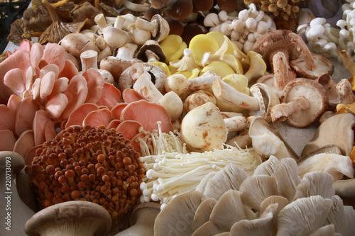 Tablou Canvas fresh uncooked exotic mushroom varieties