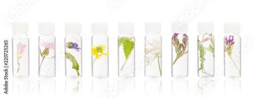 Fotografie, Obraz  Natural remedies - FLORITERAPIA Bacha.