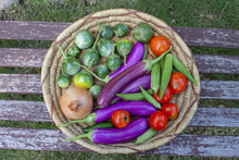 Basket Of Colorful Vegetables Including Thai And Japanese Eggplant An Onion Tomatoes And Okra - Top View