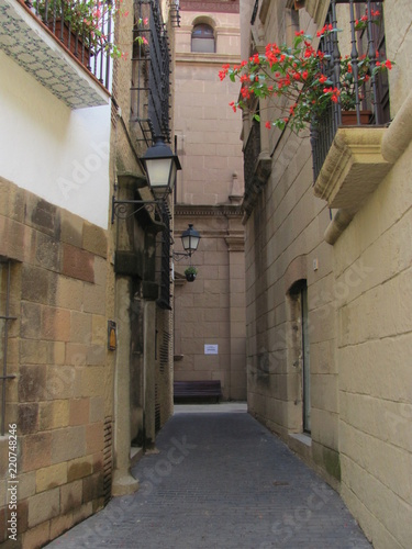 An ancient street and a balcony with flowers on the wall of the house