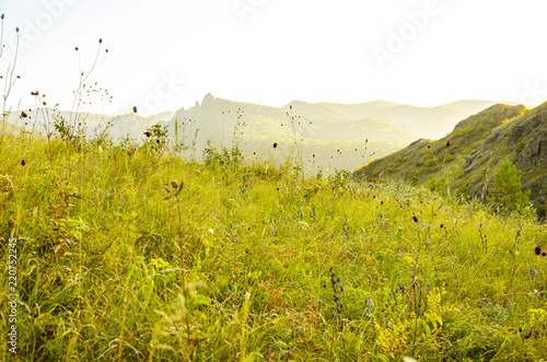 Foto op Canvas Pistache Paysage with mountains, hills and green trees.