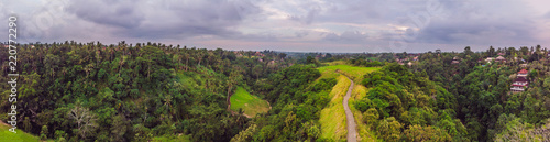 Aerial picture of Campuhan Ridge Walk , Scenic Green Valley in Ubud Bali Fototapete