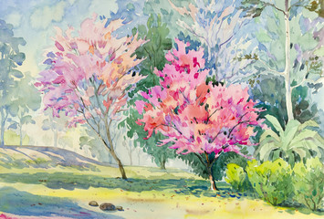 Panel Szklany Inspiracje na wiosnę Landscape colorful of Wild Himalayan Cherry flower.