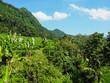Reisfelder, Sidemen, Bali