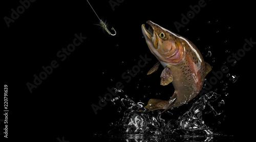 Brown rainbow trout fish and fly fishing lure Wallpaper Mural