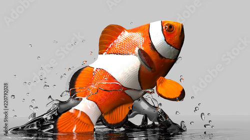 Gray background and clown fish underwater and jumping out realistic 3d render Fototapet
