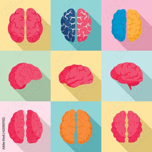 Obraz Genius brain icon set. Flat set of genius brain vector icons for web design - fototapety do salonu