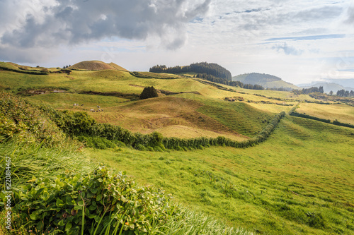 Tuinposter Pistache Wonderful hills and fields landscape in Sao Miguel, Azores Islands