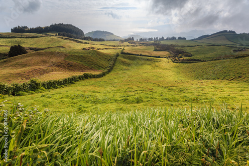 Deurstickers Honing Wonderful hills and fields landscape in Sao Miguel, Azores Islands